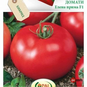 домат-елена-прима-f1_02