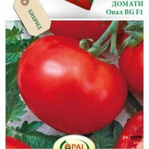 домат-опал-f1_02