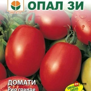 домат-рио-гранде_02