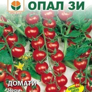 домат-чери_02