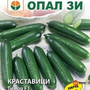 краставици-тимор-ф1_02
