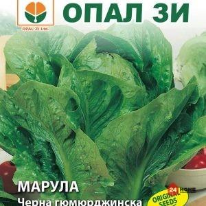 марула-черна-гюмюрджинска_02