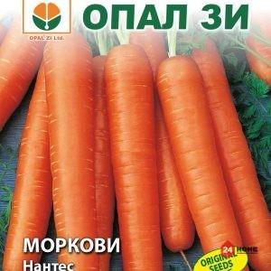 моркови-нантес_02