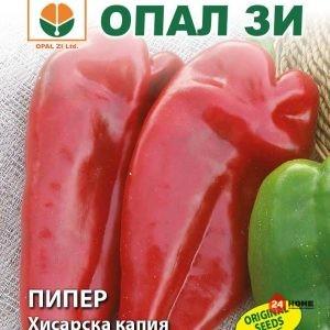 пипер-хисарска-капия-1