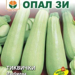 тиквички-изобилна1
