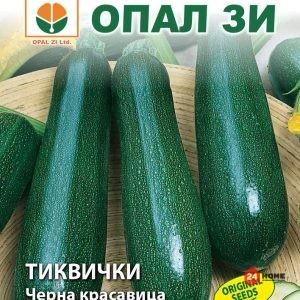 тиквички-черна-красавица1